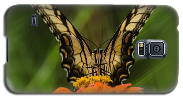 Nature Stain Glass Galaxy S5 Case by Donna Brown