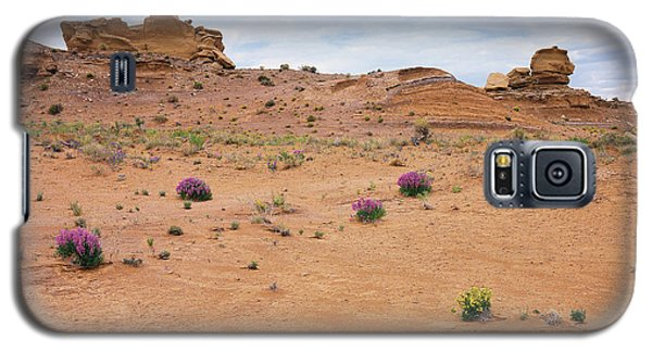 Nature Walkabout Galaxy S5 Case
