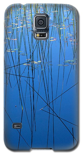 Galaxy S5 Case featuring the photograph Nature's Abstract In Blue 1 by Peggy Collins