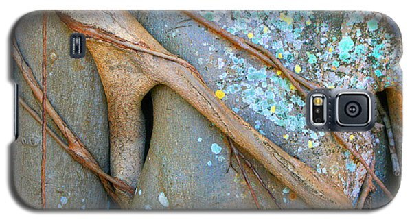 Nature's Abstracts Galaxy S5 Case by Mariarosa Rockefeller