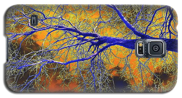 Galaxy S5 Case featuring the photograph Natures Brewing A Frightful Stew by Diane Miller