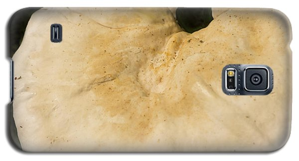 Galaxy S5 Case featuring the photograph Nature's Crescent by Wanda Brandon