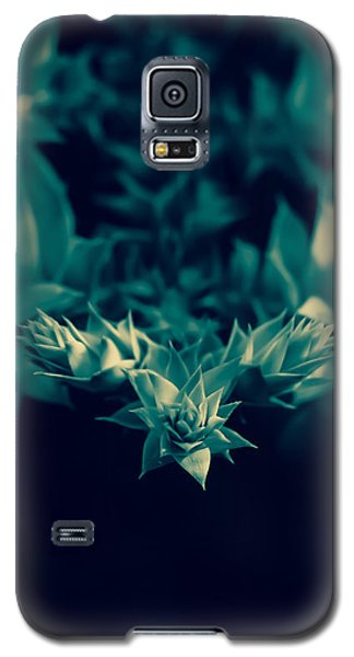 Nature's Directions - Green Galaxy S5 Case