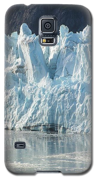Nature's Ice Castle Galaxy S5 Case