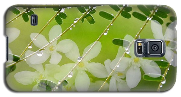 Galaxy S5 Case featuring the photograph Nature's Jewelry by Darla Wood