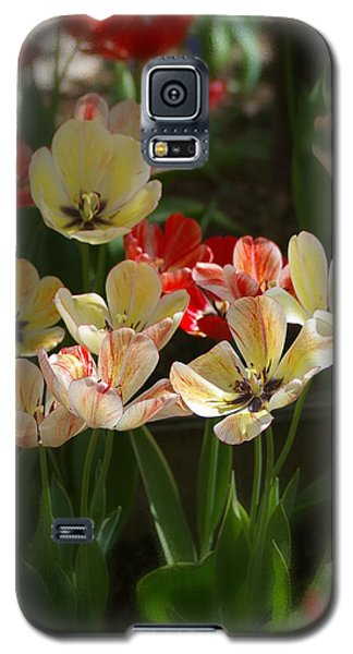 Galaxy S5 Case featuring the photograph Natures Joy by Randy Pollard