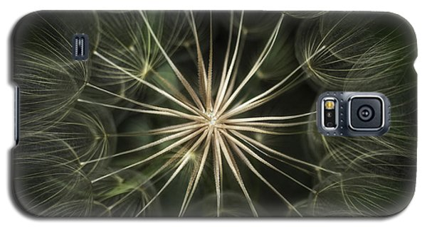 Galaxy S5 Case featuring the photograph Nature's Kaleidoscope  by Kristal Kraft