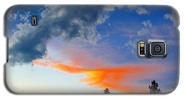 Galaxy S5 Case featuring the photograph Nature's Palette by Barbara Chichester