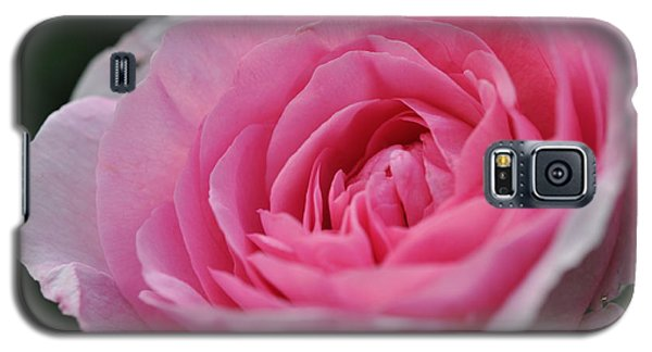 Galaxy S5 Case featuring the photograph Nature's Pink by Sabine Edrissi