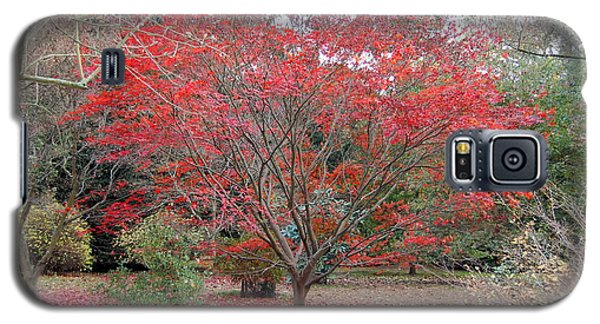 Galaxy S5 Case featuring the photograph Nature's Red by Linda Prewer