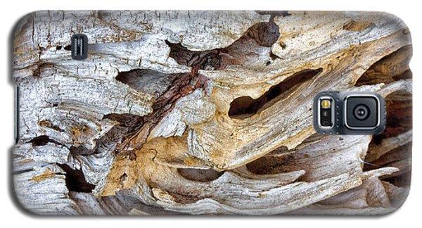 Nature's Sculpture Galaxy S5 Case