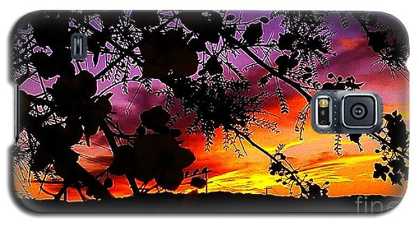 Nature's Silohuette Galaxy S5 Case by Chris Tarpening