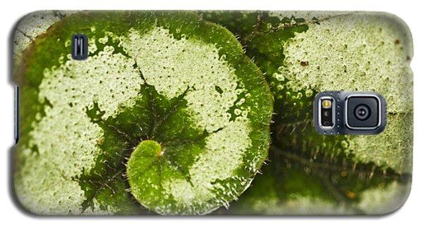 Natures Spiral Galaxy S5 Case