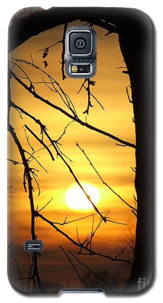 Natures Window Galaxy S5 Case