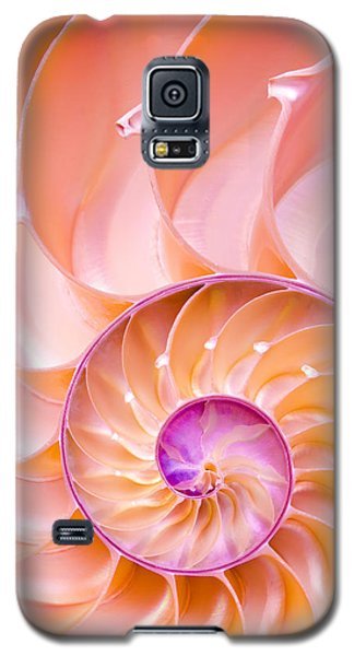 Nautilus Shell Detail Galaxy S5 Case