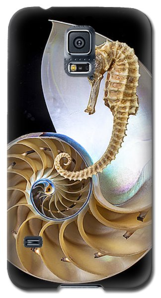 Nautilus With Seahorse Galaxy S5 Case by Garry Gay