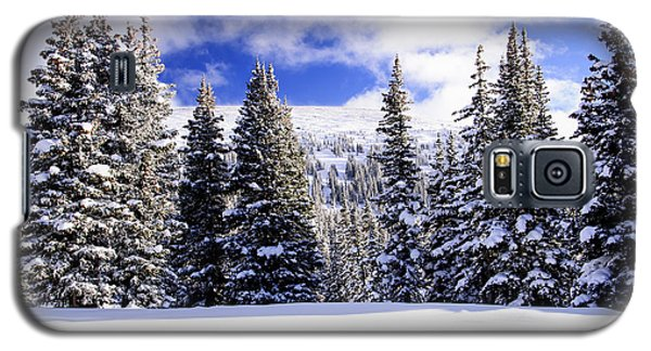 Galaxy S5 Case featuring the photograph Near Treeline by The Forests Edge Photography - Diane Sandoval