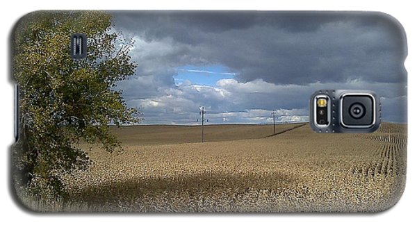 Nebraska Cornfield Galaxy S5 Case by Lea Wiggins