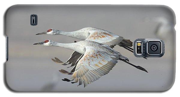 Neck N Neck Galaxy S5 Case by Bryan Keil