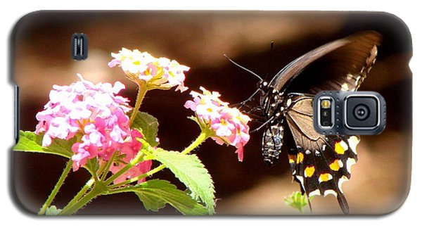 Galaxy S5 Case featuring the photograph Nectar Of The Monarchs by Linda Cox
