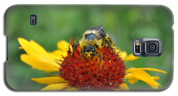 Need More Pollen Galaxy S5 Case by Jim Hogg