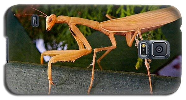 Neighborly Mantis Galaxy S5 Case