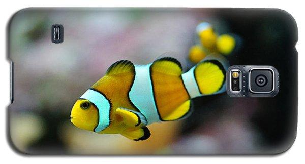 Nemo From Barcelona Galaxy S5 Case by Stephan Yankov