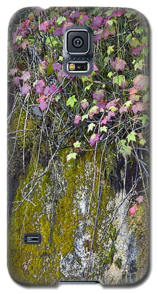 Neon Leaves No 2 Galaxy S5 Case