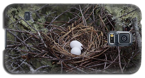 Galaxy S5 Case featuring the photograph Nest And Eggs by Adria Trail