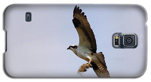 Osprey Galaxy S5 Case - Nest Builder by Mike  Dawson