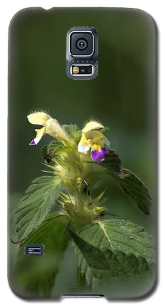 Galaxy S5 Case featuring the photograph Nettle by Leif Sohlman