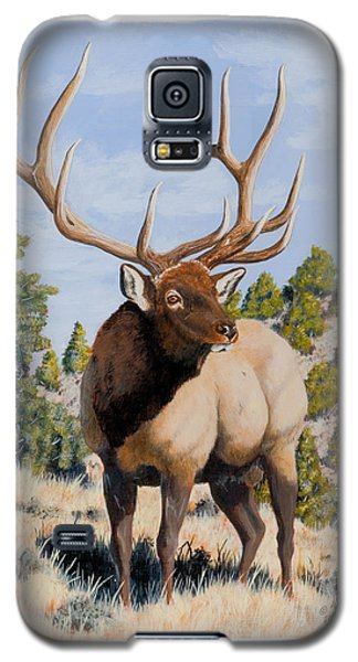 Nevada Typical Elk Galaxy S5 Case