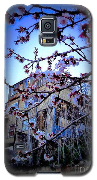 Galaxy S5 Case featuring the photograph New And Old  by Sarah Mullin
