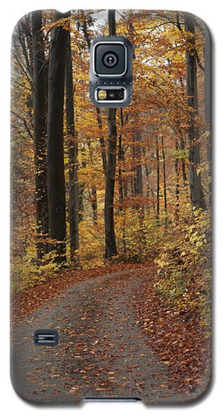 New Autumn Trails Galaxy S5 Case