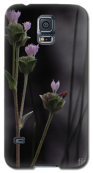 Galaxy S5 Case featuring the photograph New Beginnings by Joy Hardee