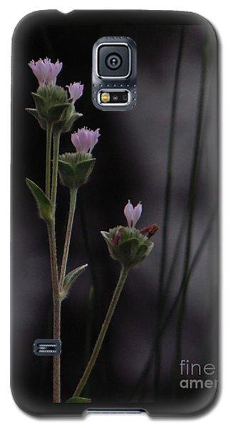 New Beginnings Galaxy S5 Case by Joy Hardee
