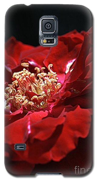 Galaxy S5 Case featuring the photograph New Dream by Joy Watson