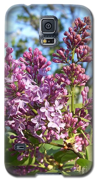 Galaxy S5 Case featuring the photograph Purple Lilac by Eunice Miller