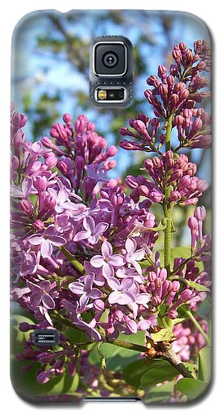 Purple Lilac Galaxy S5 Case