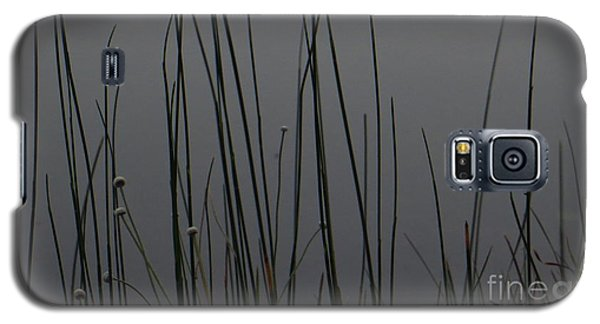 New Joys Galaxy S5 Case by Joy Hardee