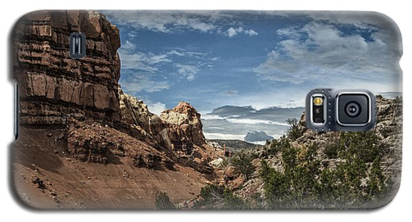 New Mexico Grande Galaxy S5 Case