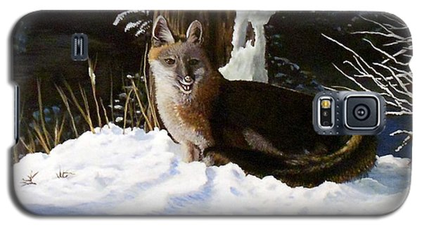 Galaxy S5 Case featuring the painting New Mexico Swift Fox by Sheri Keith