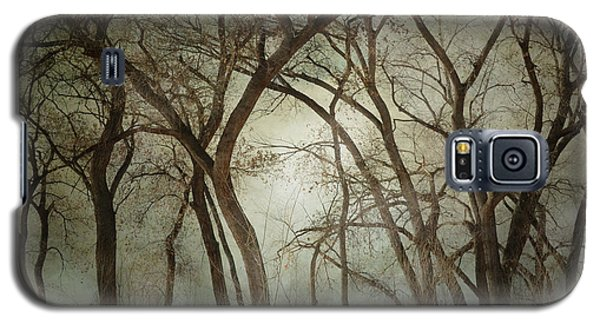 New Mexico Winter Woodland Galaxy S5 Case by Andrea Hazel Ihlefeld