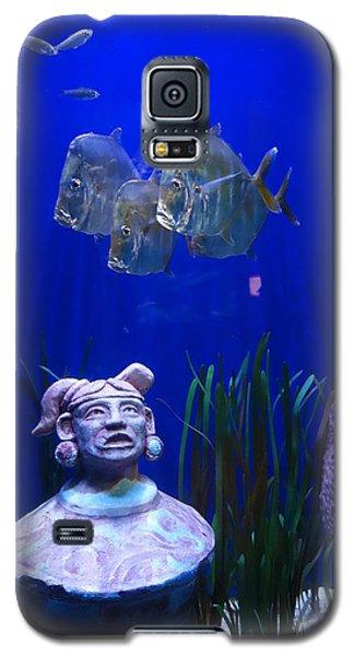 New Orleans Aquarium Galaxy S5 Case