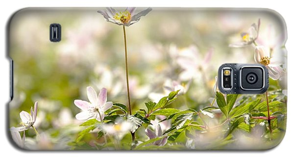 Galaxy S5 Case featuring the photograph New Time Springtime by Rose-Maries Pictures