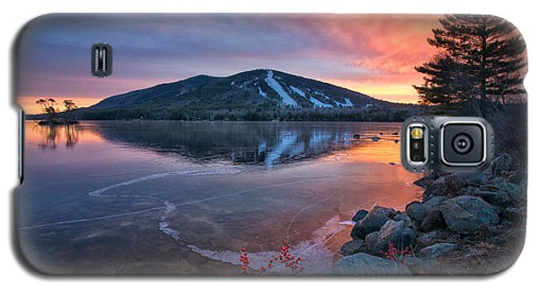 New Years Day Sunset With Berries Galaxy S5 Case