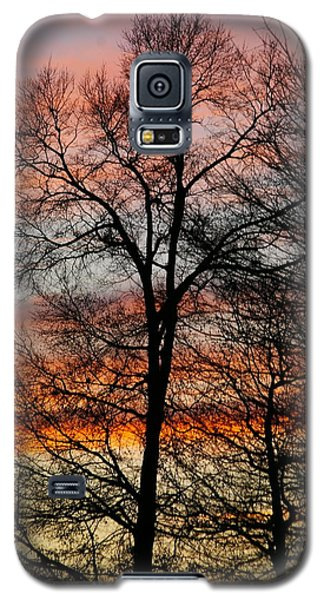 Galaxy S5 Case featuring the photograph New Years Sunset by Tannis  Baldwin