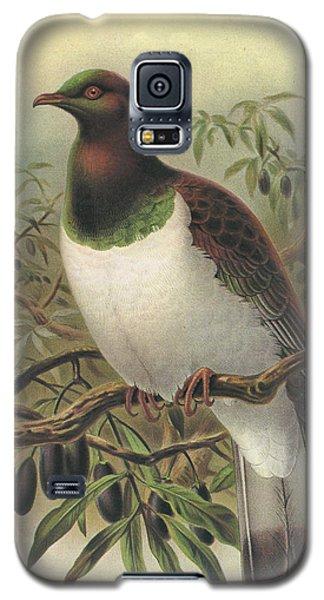 New Zealand Pigeon Galaxy S5 Case by Anton Oreshkin