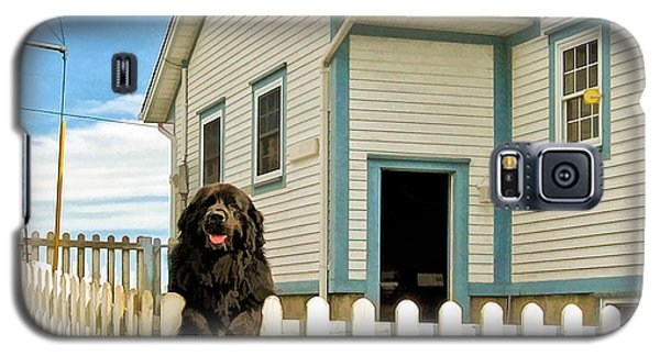 Newfoundland Dog In Newfoundland Galaxy S5 Case