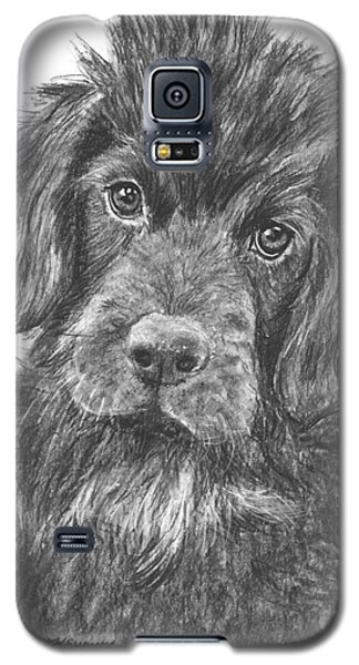 Newfoundland Puppy Sketch Galaxy S5 Case